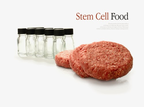 stem cell food